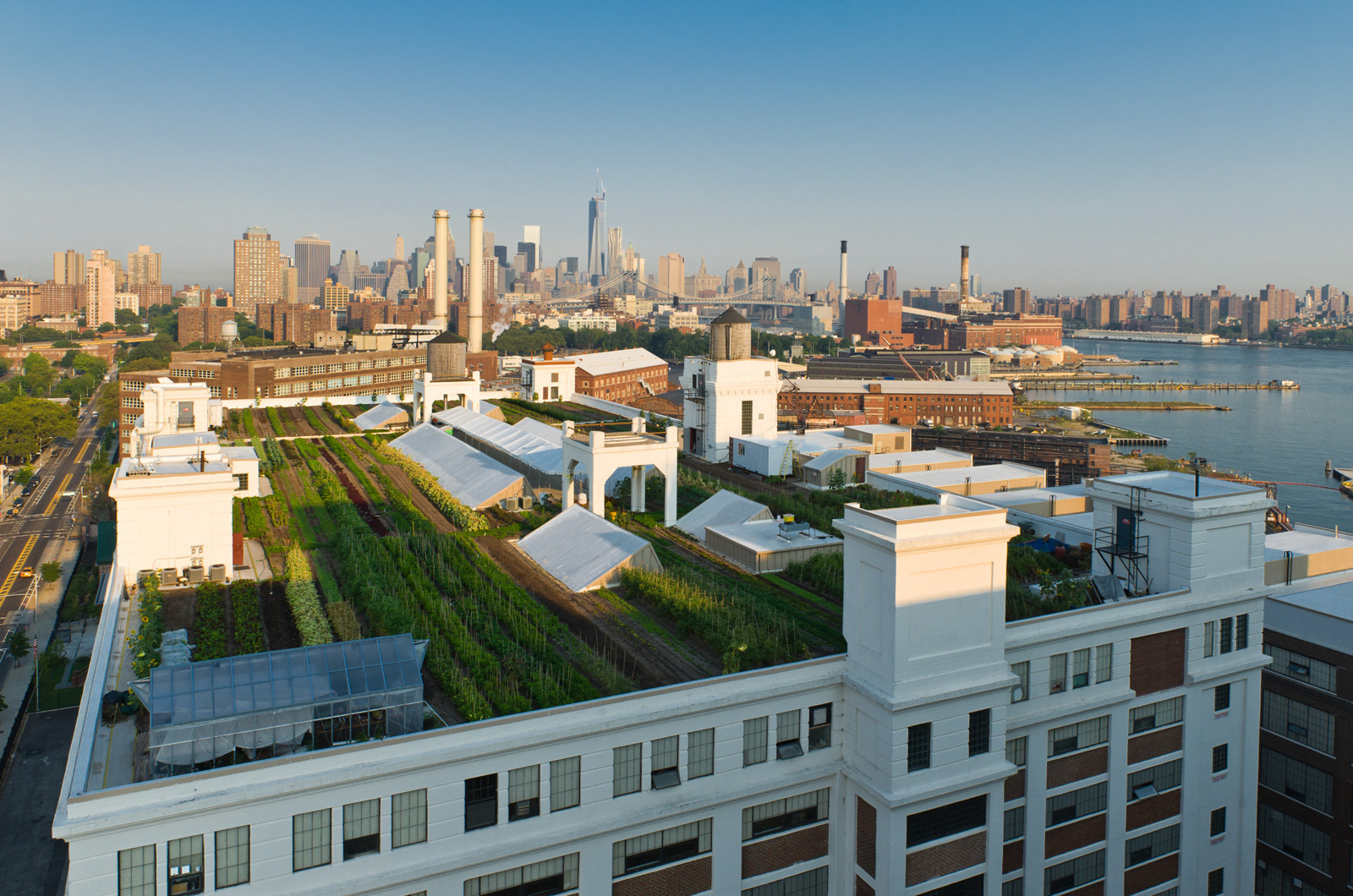 Brooklyn Grange Rooftop Farm, Brooklyn Navy Yard.